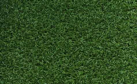 Astro Tour Putt - Artificial Grass