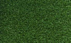 Astro Tour Putt - Artificial Grass